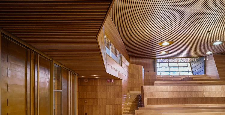 Sistema de techo de lamas de bambú que mejora la acústica